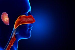 Ear, Nose, throat treatments Switzerland
