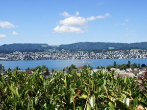 Calda Clinic, reha and addiction clinic Zurich